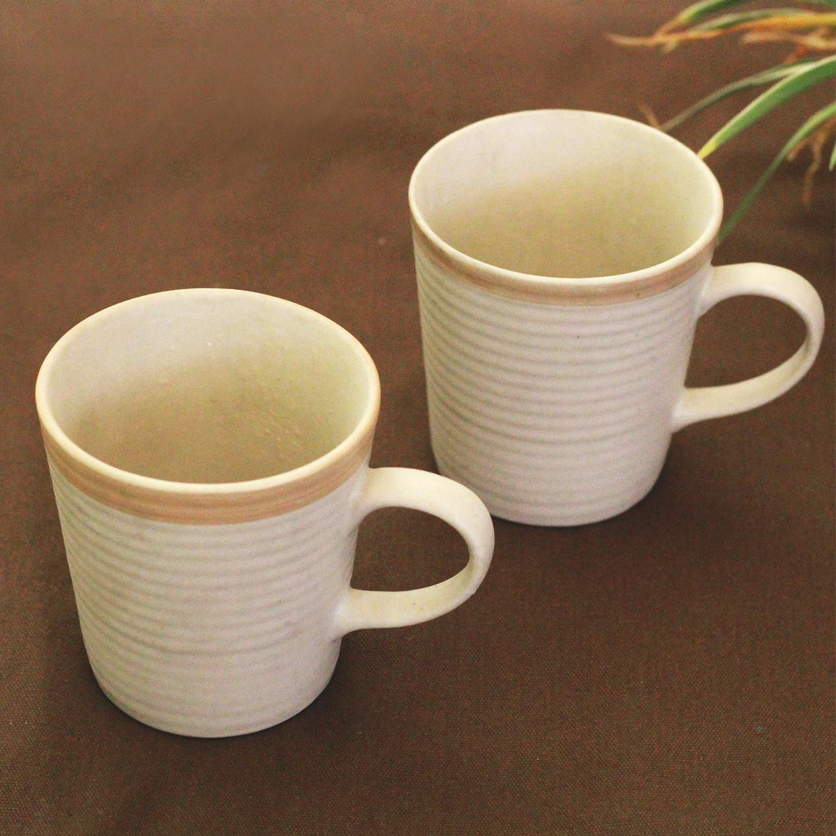 Ceramic Coffee Mugs(Set of 2)