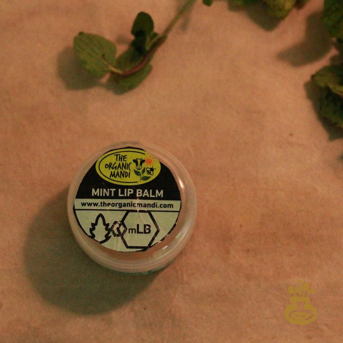 Mint Lip Balm (15g)